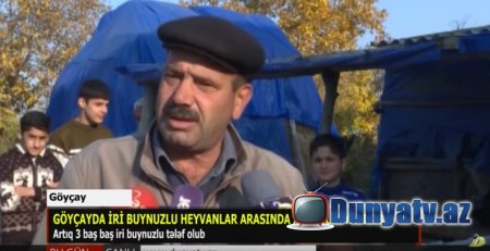 GÖYÇAYDAN REPORTAJ-VİDEO-21.11.2019
